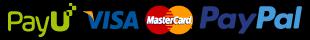 loga przyjmowanych płatności